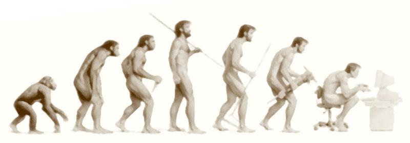 evolucion_habitos_articulo