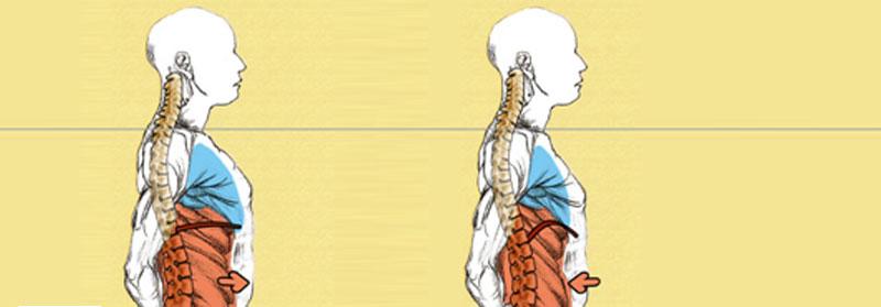 respiracion_presion_abdominal_articulo