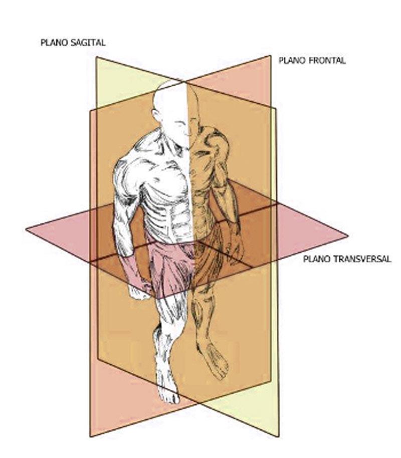 Planos y Ejes de movimiento | Metodo SPRT